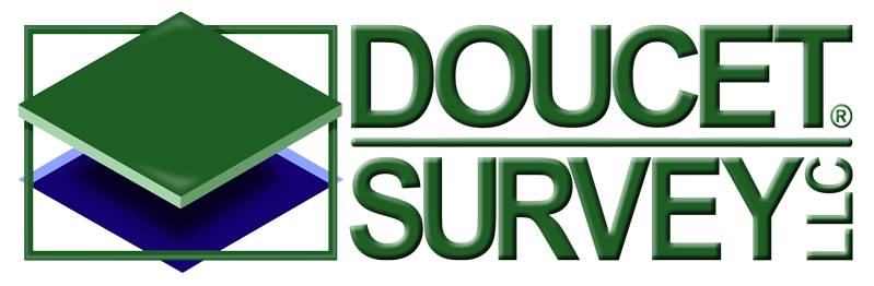 Doucet Survey Inc. Logo